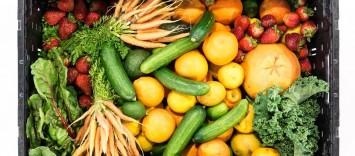 Las frutas y verduras suponen un 11% del gasto de la cesta de la compra de productos de gran consumo