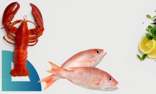 18º Congreso AECOC de Productos del Mar