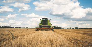 AGRICOOL, la primera escuela de verano agroalimentaria para universitarios y pymes