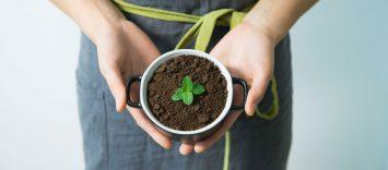 ¿Cómo luchar contra el desperdicio de alimentos?