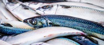 Las claves para vender más y mejor los Productos del Mar