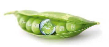 6º Punto de Encuentro contra el desperdicio alimentario