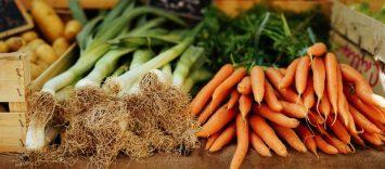 9 medidas contra el desperdicio de alimentos