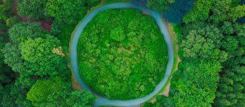IRR | 6 innovaciones en economía circular