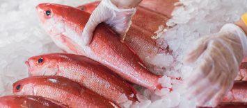 El consumidor de productos del mar