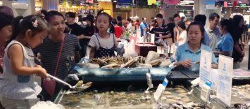 Shanghái: el retail más innovador en frescos