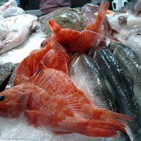 La sección de productos del mar en un Distribuidor