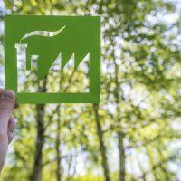 Sostenibilidad: Qué es y cómo afecta a los hábitos de compra del shopper