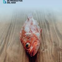 Informe Congreso AECOC Productos del Mar 2019