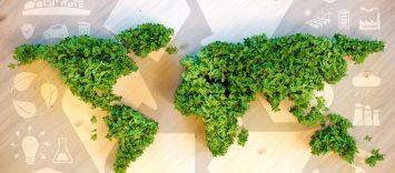 Economía circular: el sistema económico del futuro