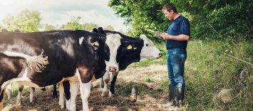 Bienestar animal: una prioridad para el consumidor