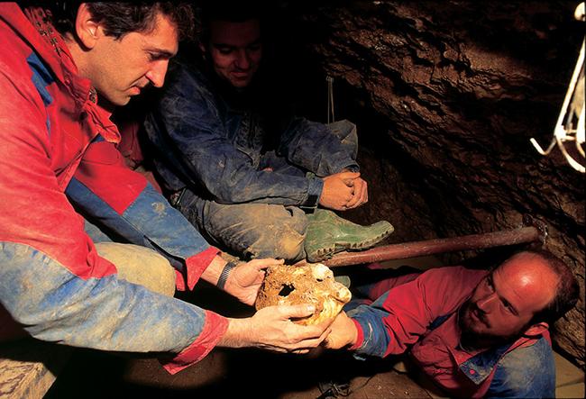 DESPIECE_SIMA-HUESOS_0058-Descubrimiento-1992-S