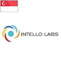 Intello-Labs-bandera