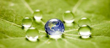 C84 | Empresas. La apuesta por el desarrollo sostenible