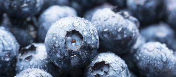 C84 | Directivos de Frutas y Hortalizas. Creciendo en línea con las tendencias del consumidor