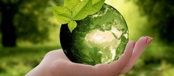 Economía Circular y Transición Energética 2021